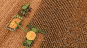 Agriculture and Innovation