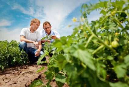 Agriculture and Innovation: trend and newest technologies