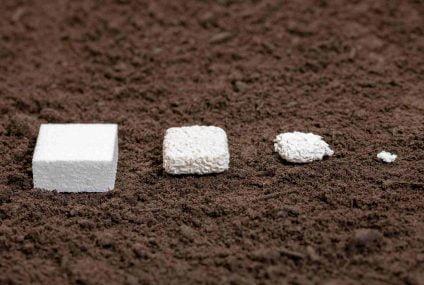Kaneka Biodegradable Polymer PHBH biobased: food approval EU, Japan, USA