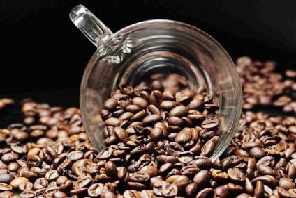 GEA Calix capsule: zero waste project for a cup of coffee