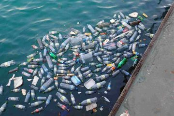 Recycling plastic waste to support the circular economy with new polymers
