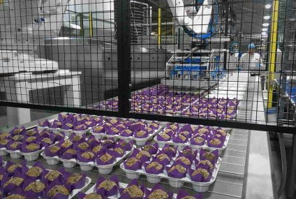 Production lines for cakes and muffins: automatic and semi automatic