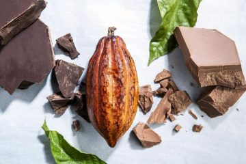 Deforestation at risk of occurring? Forever Chocolate for forest protection