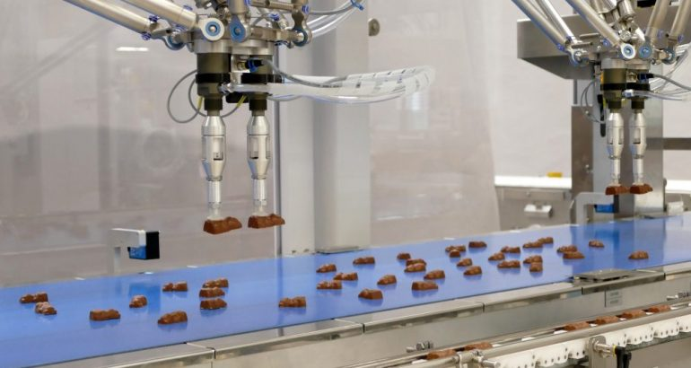 Vision Picker: robot feeding system with camera for chocolate packaging