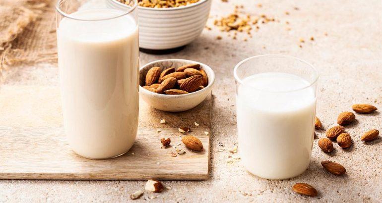 La Morella Nuts from Mediterranean nut craft in the world market
