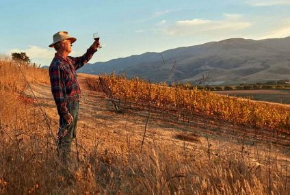 Submersible SP pump: sustainability for Californian organic vineyard