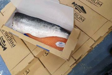 Fish packaging for the seafood voyage to dinner table